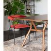 Haily - Velvet dining chairs